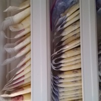 Over 1000 ounces of Breast milk available from healthy military mom.