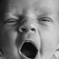 Nutrient dense preemie milk from fairy-free, crunchy organic mommy