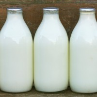 Fresh Breast Milk Ready For Donation