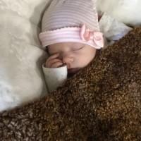 Fresh or Frozen / 8 Weeks baby / Illinois