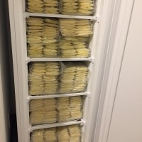 1,500+ OUNCES OF LIQUID GOLD from a Healthy + Happy Mama of 2.  Deep Frozen / Recent 3 months.  VERY sanitary and organized!