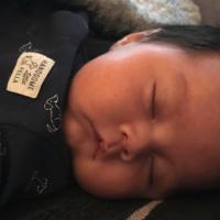 Frozen breast milk in Honolulu Aug 2018-present Health mom Extra milk over 500 Oz